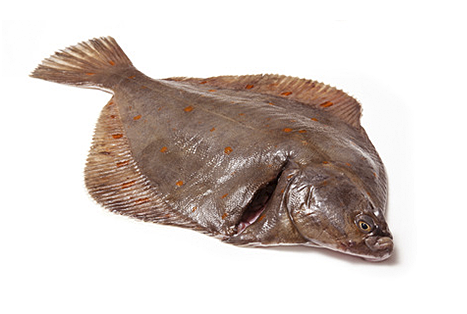 Aweta Flatfish Grading And Packing